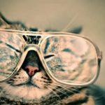カナダで眼科検診へ|定期的にチェック!費用と所要時間は?